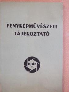 Alapfy Attila - Fényképművészeti tájékoztató 1965. VI. [antikvár]
