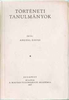 Angyal Dávid - Történeti tanulmányok [antikvár]