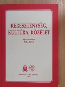 Anna Maria Dabrowska - Kereszténység, kultúra, közélet [antikvár]