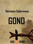 Hermann Sudermann - Gond [eKönyv: epub, mobi]