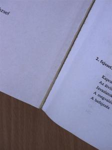 Hoványi Gábor - Menedzsment tanácsadás [antikvár]