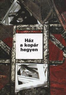 Bogdán László - Ház a kopár hegyen [antikvár]