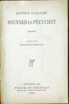 Gustave Flaubert - Bouvard és Pécuchet [antikvár]