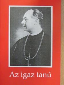 Hölvényi György - Az igaz tanú [antikvár]