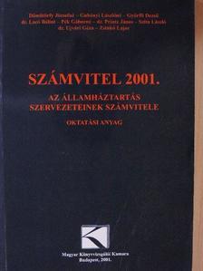 Dömötörfy Józsefné - Számvitel 2001. [antikvár]