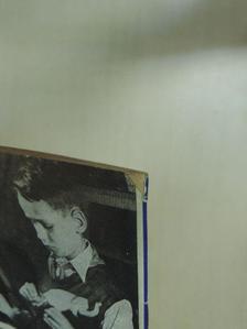 Borók Imre - Köznevelés 1954. május 15. [antikvár]