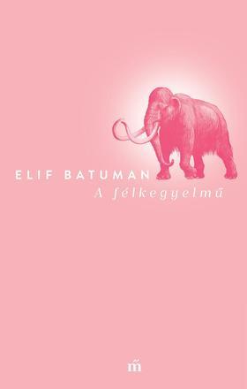 Batuman, Elif - A félkegyelmű