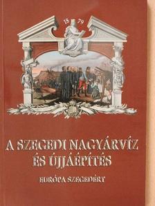 Andó Mihály - A szegedi nagyárvíz és újjáépítés [antikvár]