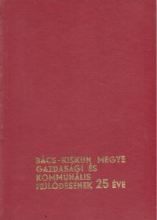 Dr. Körös Gáspár - Bács-kiskun megye gazdasági és kommunális fejlődésének 25 éve [antikvár]