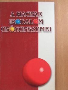 Arany János - A magyar irodalom gyöngyszemei [antikvár]