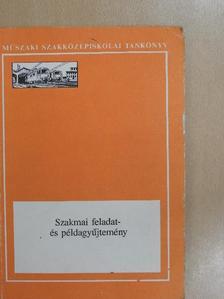 Bíró Ernő - Szakmai feladat-és példagyűjtemény [antikvár]