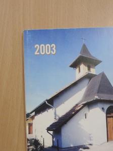 Molnár Imre - Vecsési kalendárium 2003 [antikvár]