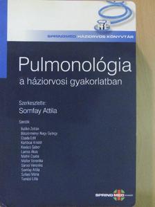 Balikó Zoltán - Pulmonológia a háziorvosi gyakorlatban [antikvár]