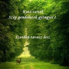 Kató Győrfiné - Kató versek Szép gondolatok gyöngyei I. Szerdán tavasz lesz  [eKönyv: epub, mobi]