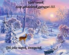 Kató Győrfiné - Kató versek Szép gondolatok gyöngyei III. Téli jeles napok, ünnepeink   [eKönyv: epub, mobi]