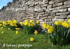 Kató Győrfiné - Kató versek Szép gondolatok gyöngyei IV. A tavasz pompája [eKönyv: epub, mobi]
