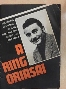 Füzesy Zoltán - A ring óriásai [antikvár]