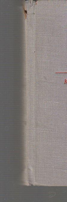 Immanuel Kant - Kritik der reinen Vernunft [antikvár]
