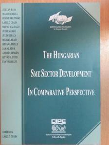 Bruno Dallago - The hungarian SME sector development in comparative perspective [antikvár]