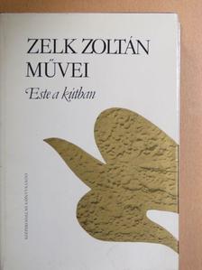 Zelk Zoltán - Este a kútban [antikvár]