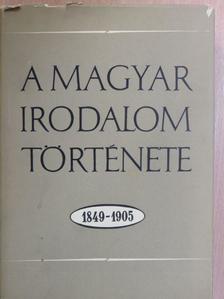 Bán Imre - A magyar irodalom története 1849-1905 [antikvár]