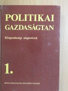 Daubner Katalin - Politikai gazdaságtan 1. (töredék) [antikvár]