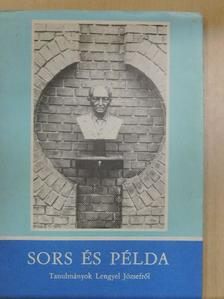 Bodri Ferenc - Sors és példa [antikvár]