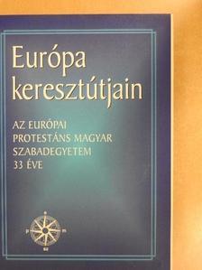 Bárczay Gyula - Európa keresztútjain [antikvár]