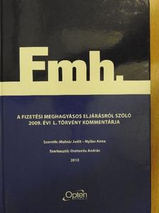 Molnár Judit - A fizetési meghagyásos eljárásról szóló 2009. évi L. törvény kommentárja [antikvár]