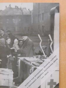 Szita Szabolcs - Friedrich Born magyarországi delegátus jelentése a Vöröskereszt Nemzetközi Bizottságának Genfbe 1945 június [antikvár]