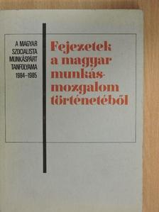 Borsányi György - Fejezetek a magyar munkásmozgalom történetéből [antikvár]