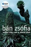 Bán Zsófia - Amikor még csak az állatok éltek
