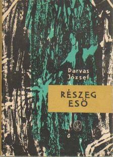 Darvas József - Részeg eső [antikvár]