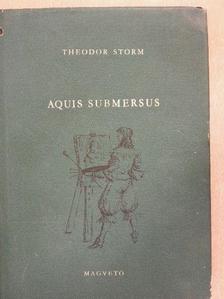 Theodor Storm - Aquis Submersus [antikvár]