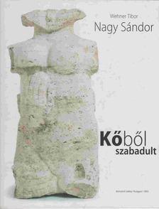 Wehner Tibor - Nagy Sándor [antikvár]