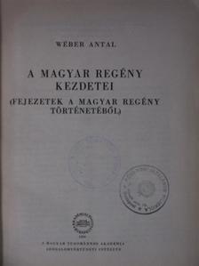 Wéber Antal - A magyar regény kezdetei [antikvár]