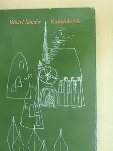 Bihari Sándor - Kaptárkövek [antikvár]