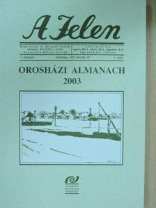 Bajnai István - A Jelen [antikvár]