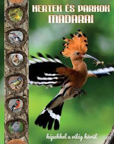 TKK - Kertek és parkok madarai