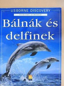 Susanna Davidson - Bálnák és delfinek [antikvár]