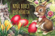 Izmindi Katalin - Nyúl Berci első húsvétja (leporelló)