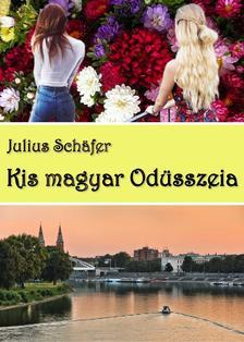 Julius Schäfer - Kis magyar Odüsszeia