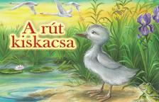Hans Christian Andersen meséje nyomán - A rút kiskacsa (leporelló)
