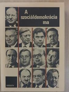 Bassa Endre - A szociáldemokrácia ma [antikvár]