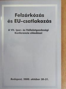 Abos Brunó - Felzárkózás és EU-csatlakozás [antikvár]