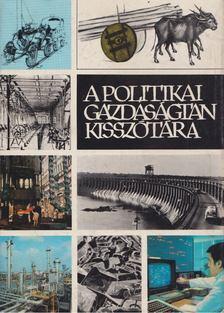 Varsádi Zsuzsa - A politikai gazdaságtan kisszótára [antikvár]