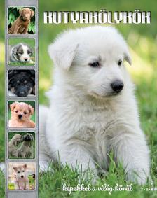 TKK - Kutyakölykök
