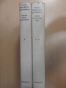 Hahn István - Világtörténet képekben I-II. [antikvár]