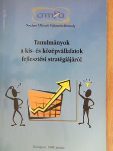 Goldperger István - Tanulmányok a kis- és középvállalatok fejlesztési stratégiájáról [antikvár]