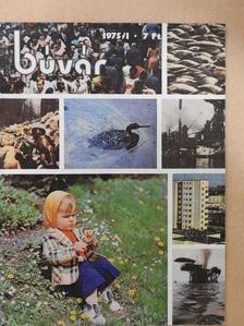 Bankovics Attila - Búvár 1975/1. [antikvár]